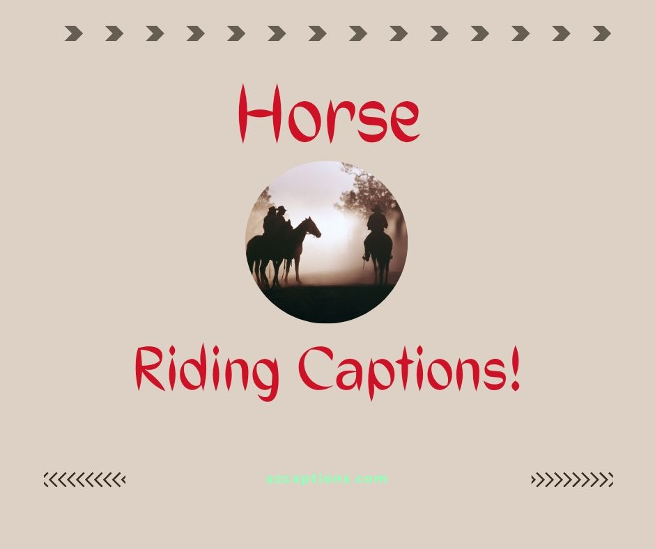 Best Horse Riding Captions for Instagram