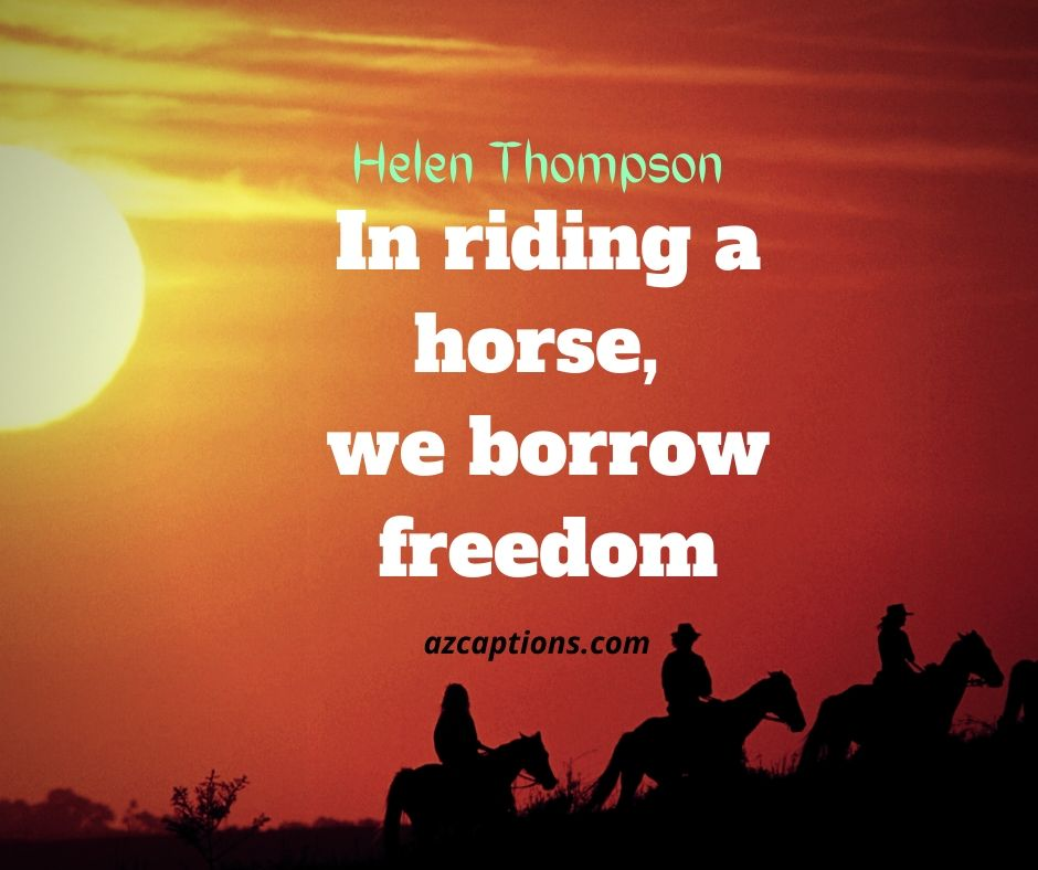 Horse Riding Quotes for Instagram